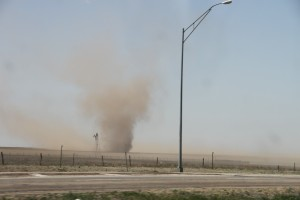 Lots of dust devils.