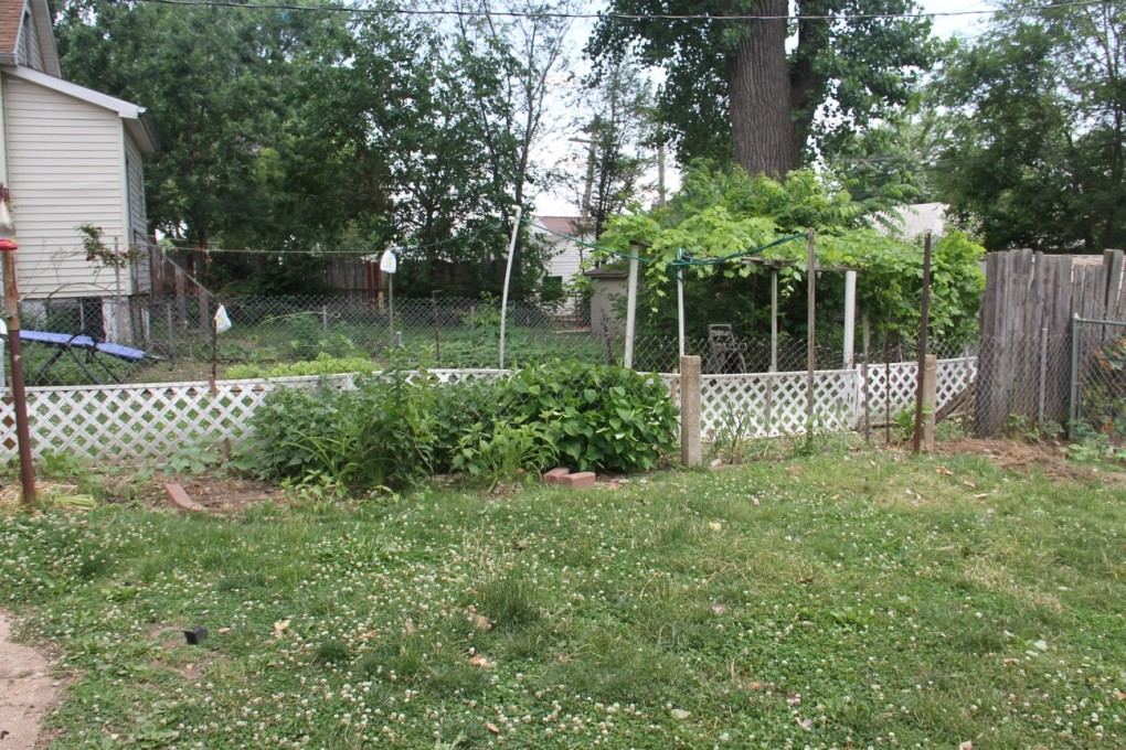 """I try VERY hard to look at my neighbor's yarden for inspiration, rather than, """"SIGH, I SUCK."""" So far, so good."""